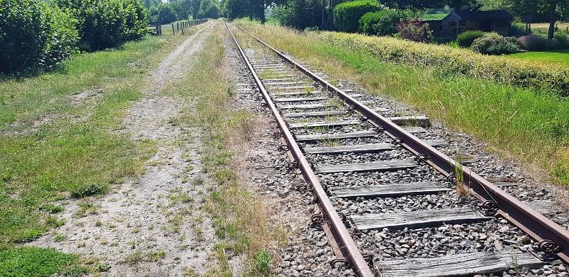 Ik maakte een wandeling, een trage tocht door het Dommdal bij Liempde bij oude spoorlijn Duits Lijntje