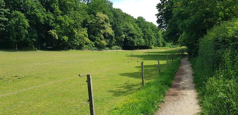 Wandelen buiten de binnenstad van Nijmegen over het Berg en Dalpad in het Hengstdal