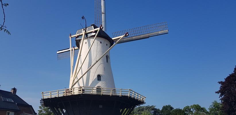 Ik maak een wandeling met de gids van Gegarandeerd Onregelmatig Buiten de binnenstad van Nijmegen over het Wijchenpad en kom langs de Witte Molen