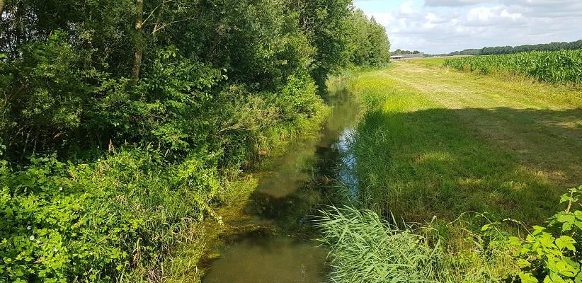 Wandelen over het Achterhoekpad van Groenlo naar Borculo