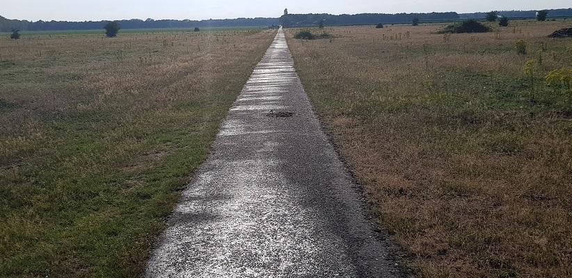 Wandeling van Brabant Vertelt over de paden en banen door de Maashorst in Uden