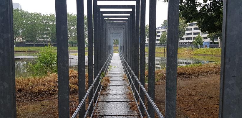 Wandeling NS-wandeling Spoorzone Tilburg bij Kromhoutpark