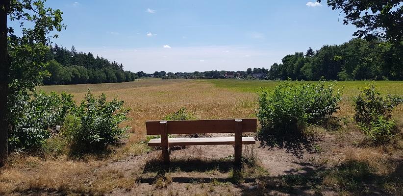 Trage tocht over de Utrechtse Heuvelrug bij Veenendaal bij de Elsterberg