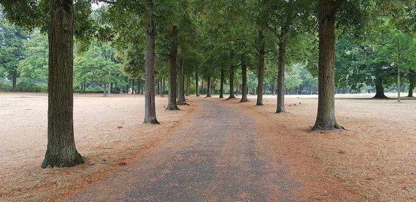 Wandeling buiten de binnenstad van Nijmegen van Gegarandeerd Onregelmatig over het Goffertpad in het Goffertpark