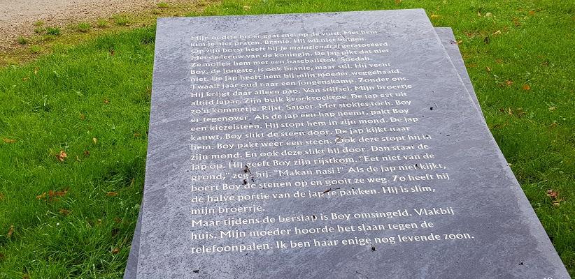 Wandelen buiten de binnenstad van Arnhem over het Parkenpad bij Sawah Belanda