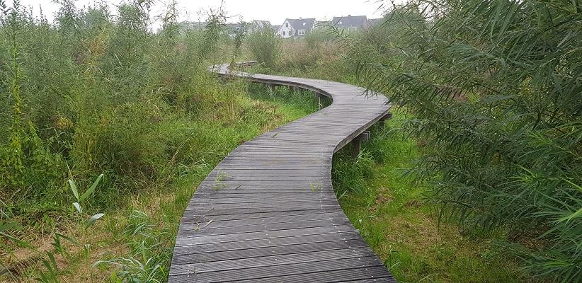 Wandelen buiten de binnenstad van Arnhem van Gegarandeerd Onregelmatig over het Vinexpad over het vlonderpad