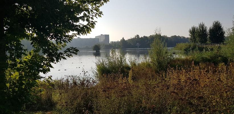 Wandeling door Vogelaarwijken in Arnhem van Gegarandeerd Onregelmatig langs het Stadseiland