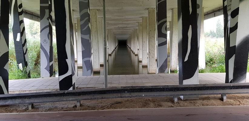 Wandelen buiten de binnenstad van Rotterdam over het Overschiepad bij pijlerwoud spoorwegviaducten