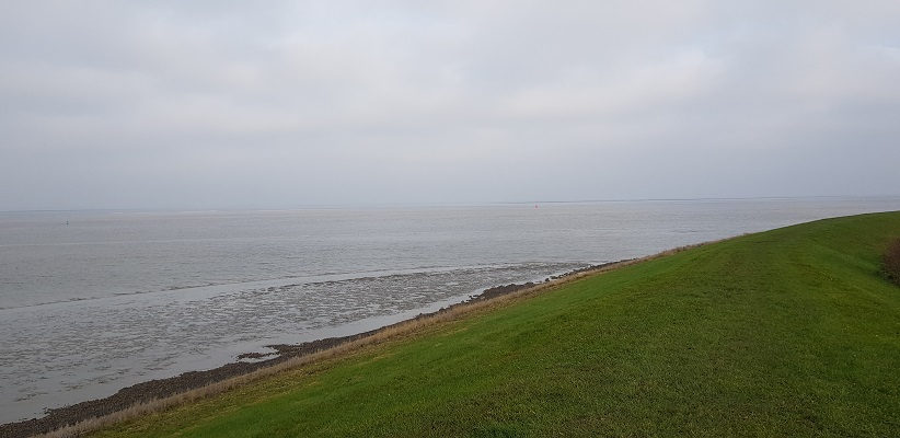 Wandeling over het Friese Woudenpad van Lauwersoog naar Ezumazijl bij de Waddenzee