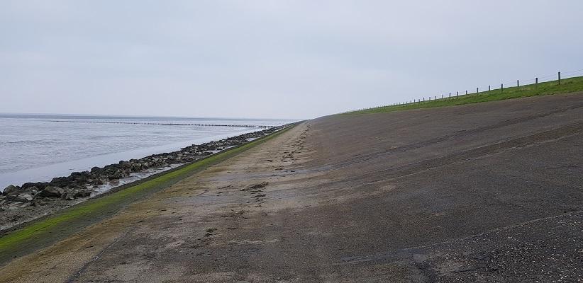 Wandeling over het Friese Woudenpad van Lauwersoog naar Ezumazijl op de Waddendijk