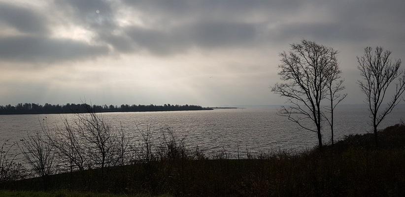 Wandeling over het Friese Woudenpad van Lauwersoog naar Ezumazijl bij het Lauwersmeer