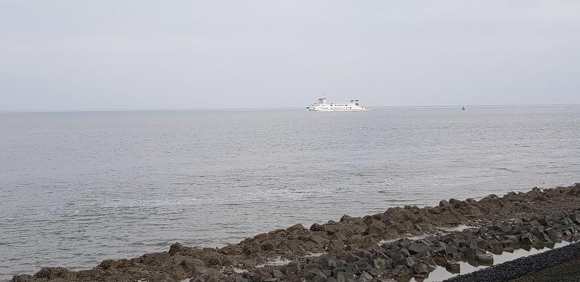Wandeling over het Friese Woudenpad van Lauwersoog naar Ezumazijl bij de Waddenzee en de boot naar Schiermonnikoog