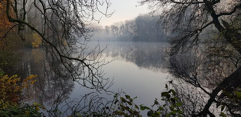 Wandeling over het Dijkenpad in Arnhem van Gegarandeerd Onregelmatig bij Het Wiel