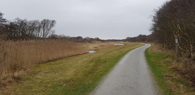 Wandeling naar het Willemsduin op het Schiermonnikoog