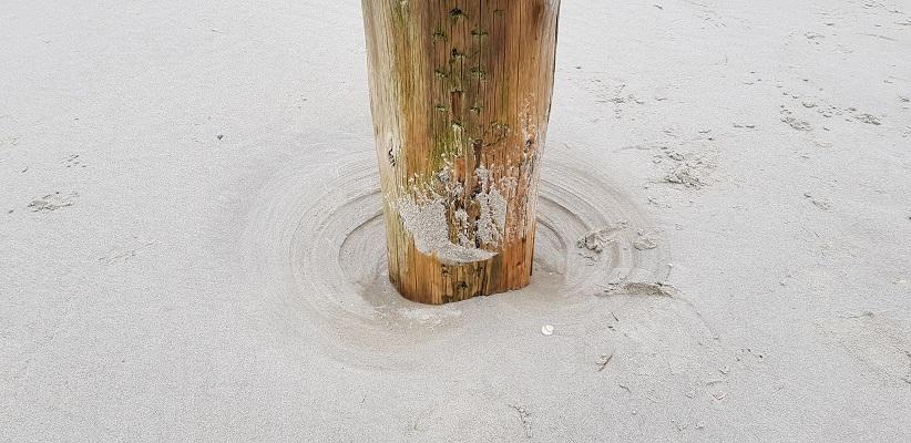 Wandeling op Schiermonnikoog naar paal 10 en terug langs het kweldergebied bij een strandpaal