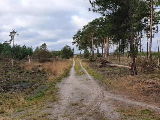 Wandeling bij Lierop over onderduikersroute