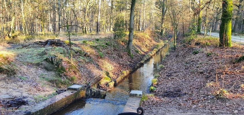 Wandeling over Trage Tocht Loenen bij de kleine waterval in de Vijverbergspreng