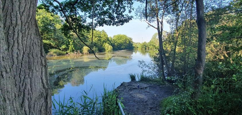 Wandeling in het Hart van Brabant over de Moerburgenroute bij het Grollegat