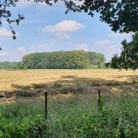 Trage Tocht De Mortelen - Wandelen door het Brabantse coulissenlandschap
