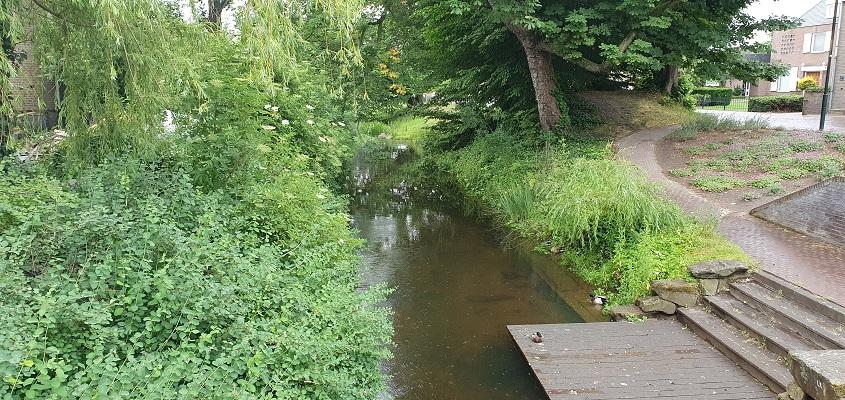Wandeling over Trage Tocht Leudal bij de Roggelbeek in Roggel