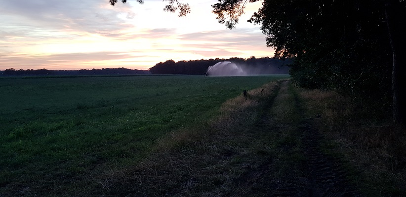 Wandeling over het Airbornepad van de Kempervennen naar Lommel in België