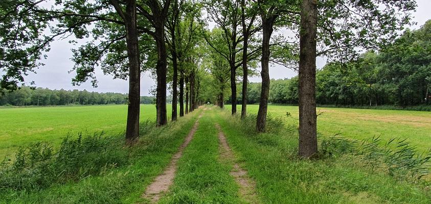 Trage Tocht Leusveld bij landgoed Zaaibroek