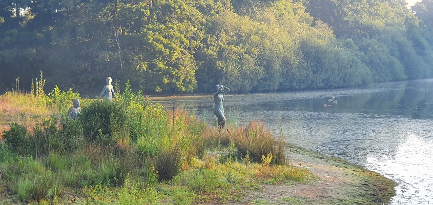 Wandeling over Andreas Schotel wandelroute in Esbeek bij Baadster in Broekeling