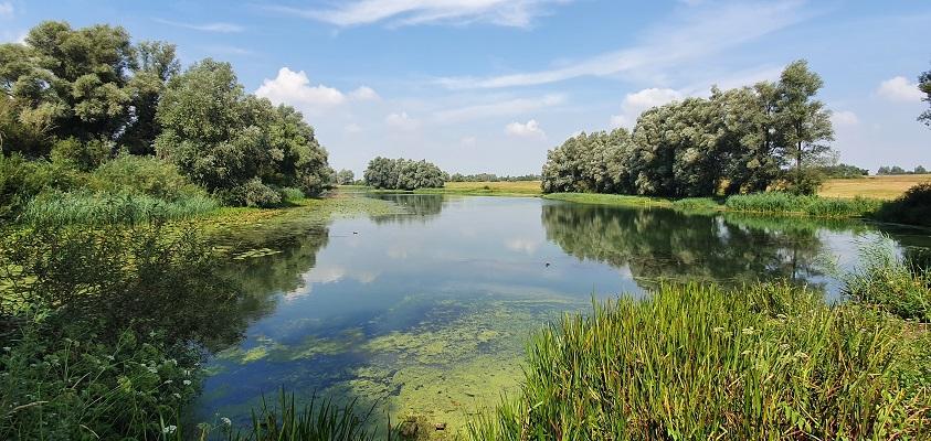 Wandeling over Trage Tocht Herwen bij recreatieplas de Bijland