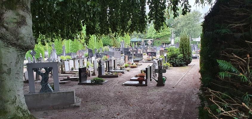 Wandeling naar het geografisch middelpunt van de Benelux bij het kerkhof in Moergestel