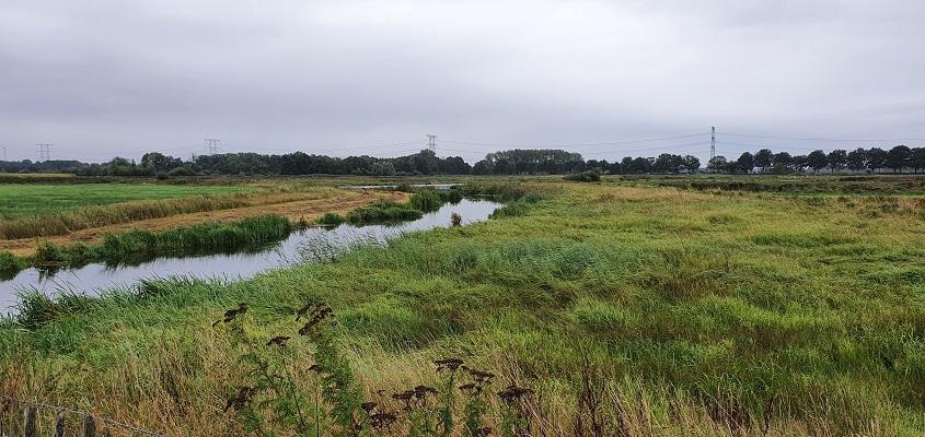 Wandeling naar het geografisch middelpunt van de Benelux bij het Moergestels Broek