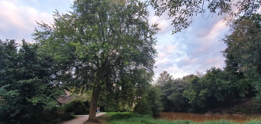 IVN-wandeling Mellepark Uden