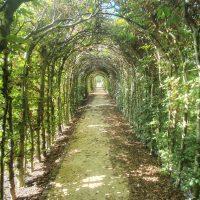 Trage Tocht Bilthoven - Wandelen over landgoed in Engelse landschapsstijl