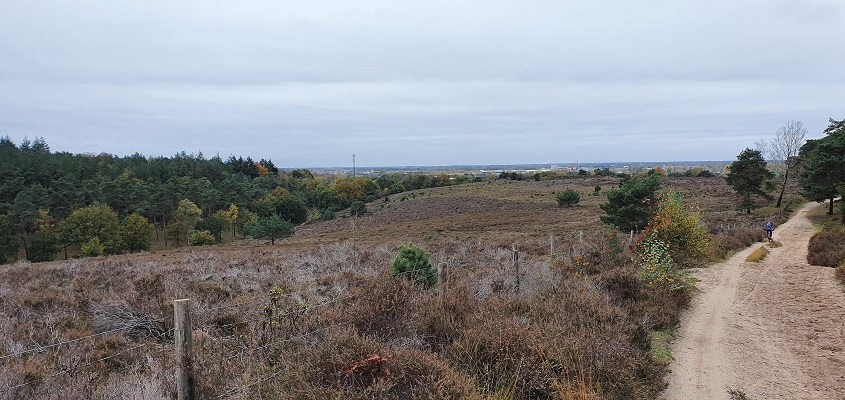 Wandeling over Geopad Mulderskop-Hooge-Hoenderberg bij Heumensoord