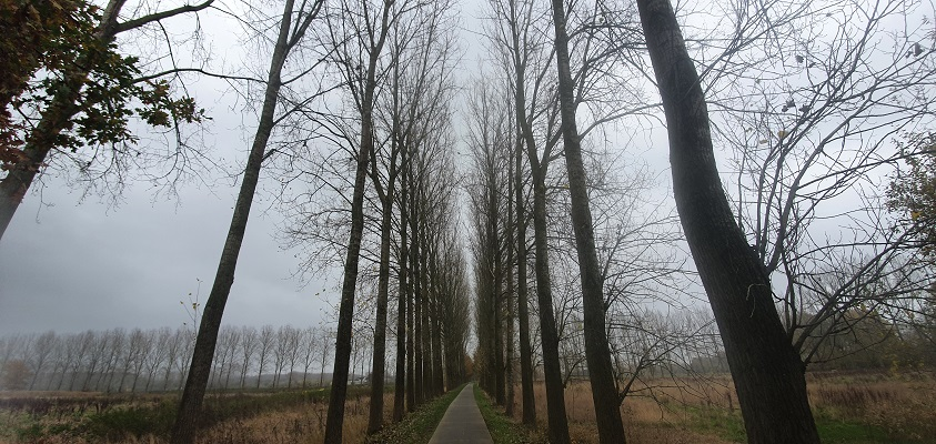 Wandeling over ommetje Smaldonk bij Schijndel