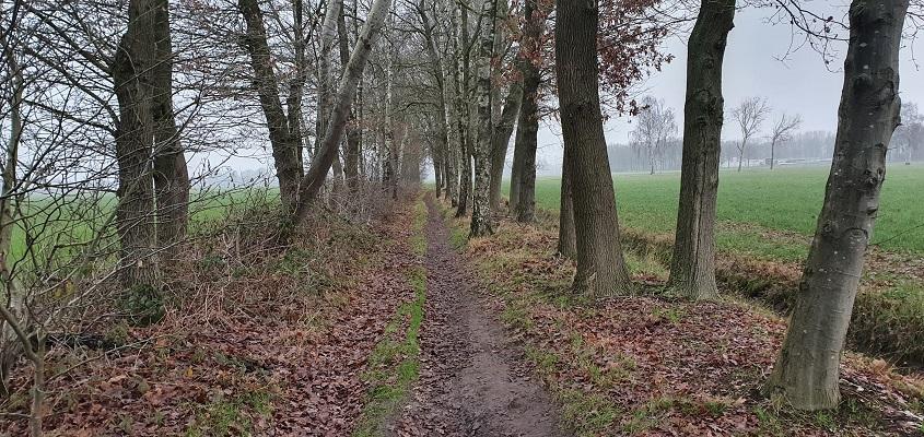 Wandeling over Trage Tocht Diessen in Ananina's Rust
