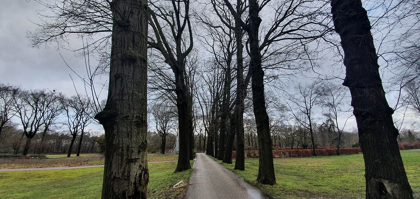 IVN-wandeling over landgoed Coudewater
