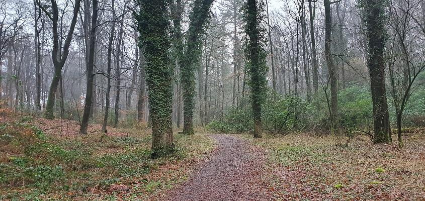 Wandeling over Geopad Nederrijk-Holdeurn