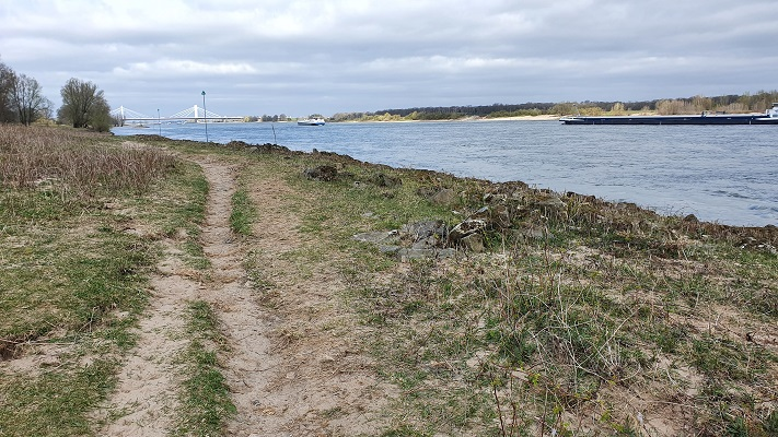 Wandeling over Trage Tocht Ewijk langs de Waal