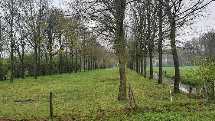 Vijf kastelenwandeling Eefde bij Huis Den Dam
