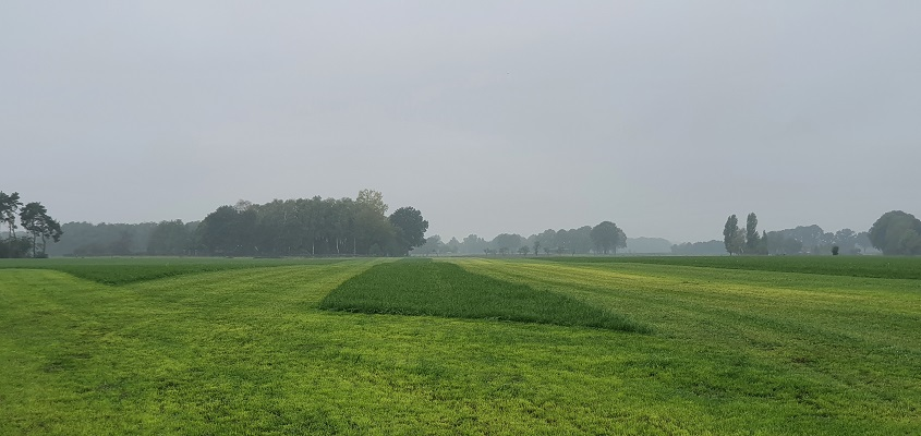 Wandeling van Doetinchem naar Ruurlo over het Achterhoekpad