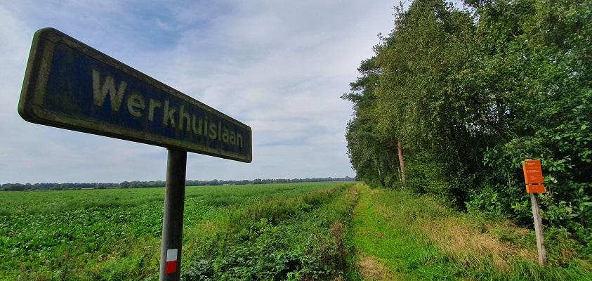 Wandeling over het Groot Frieslandpad van Bellingwolde naar Papenburg bij de Werkhuislaan