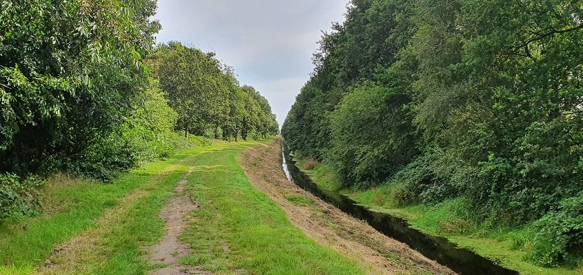 Wandeling over het Groot Frieslandpad van Bellingwolde naar Papenburg bij de Brualer Schloot