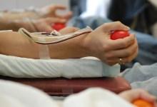 Photo of Έκκληση για αιμοπετάλια για τον 14χρονο Αλέξανδρο που διαγνώστηκε με καρκίνο στο συκώτι