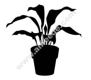 House Plant 3 dxf file