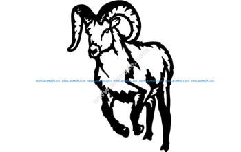 Bighorn Mountain Goat