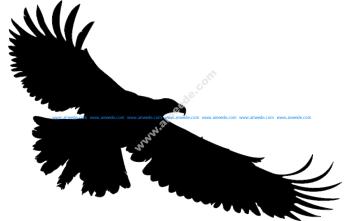 Multiple Mirror Frame Designs