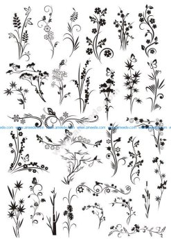 Decorative Elements Floral Ornaments