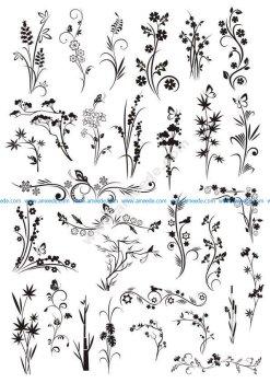 Decorative Elements Floral Ornaments