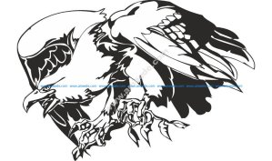 Predatory Bird Eagle Vector