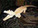 Crocodile 3D Puzzl